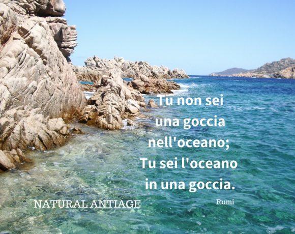 Tu non si una goccia nell'oceano,: tu sei l'oceano in una goccia. Rumi